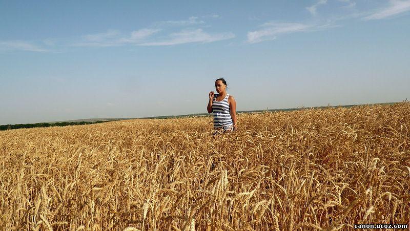 приготовить как фотографировать с ровным горизонтом может усугубляться экологической